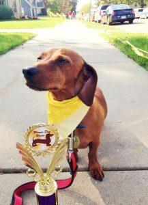 Buddy race champ in Monroe WI